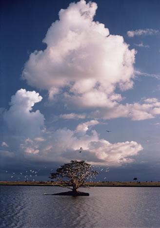 Lake in Tsavo National Park, Kenya